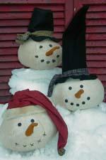 535 Frosty Heads