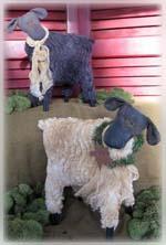 700 Baa Baa Sheep